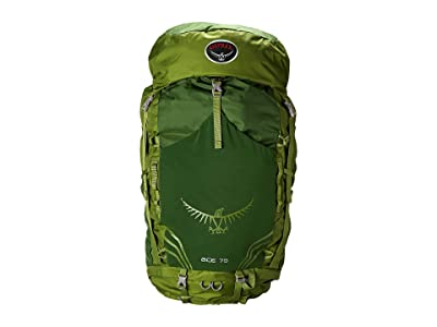 Osprey Ace 75 (Ivy Green) Backpack Bags