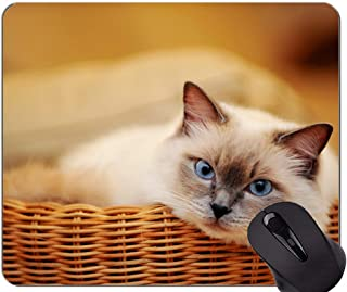 Mouse Pad with Stitched Edge,Blue Eyes Pet Animal Cat Home Office Computer Accessories Mousepads