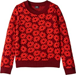 Daisy Print Sweater (Big Kids)
