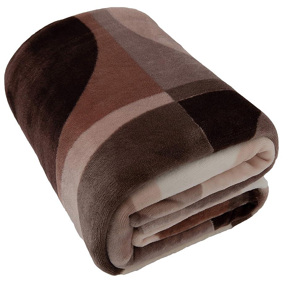 買い手デマンド解凍する、雪解け、霜解けテイジン 毛布にもなる布団カバー アイリングシングル (150×210cm) ブラウン