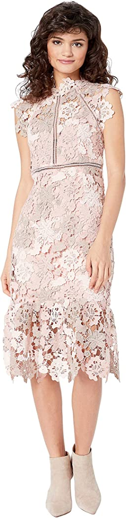 e8d71074c9d7 Nue by shani lace dress w flounce detail nude | Shipped Free at Zappos