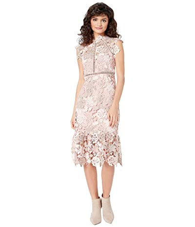 Bardot Dani Lace Dress (Rose/Beige) Women