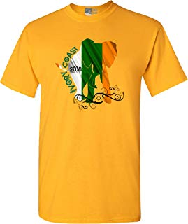 City Shirts Mens World Soccer Ivory Coast Sports Adult DT T-Shirt Tee