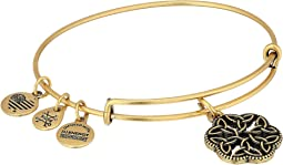 Alex and Ani Path of Symbols - Endless Knot III Bangle