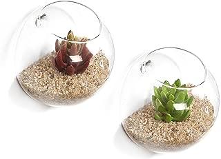 glass wall bowls
