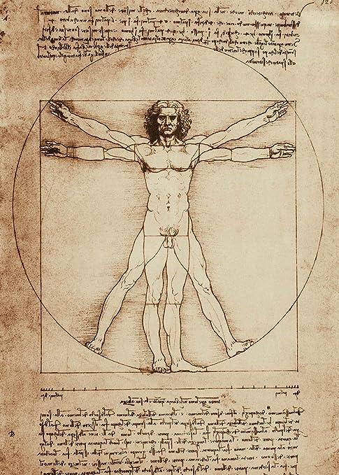 LuxHomeDecor - L'Homme de Vitruve par Léonard de Vinci - Cadre impression  sur panneau en bois MDF, bord noir, 70 x 50 cm : Amazon.fr: Cuisine et  Maison