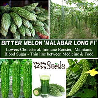 Bitter Gourd Malabar Long 5 Seeds Tropical Asian Vegetable Garden Bitter Melon F1 Hybrid