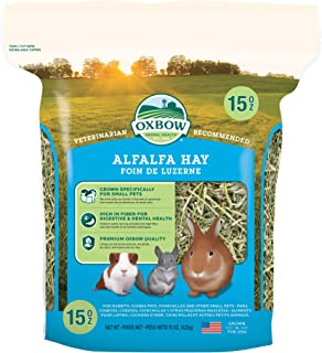 Oxbow Animal Health Alfalfa Hay, For Rabbits, Guinea Pigs, And Small Pets, Grown In The USA, Hand-Selected And Hand-Sorted...
