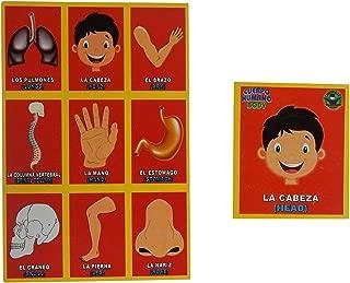Prodidac Jr Human Body Bingo Game for Kids/Loteria del Cuerpo Humano