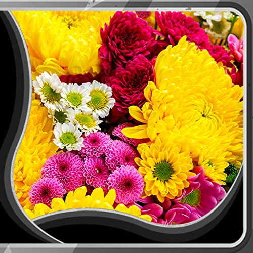 Blumen Live Wallpapers