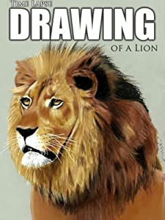 Clip: Time Lapse Drawing of a Lion