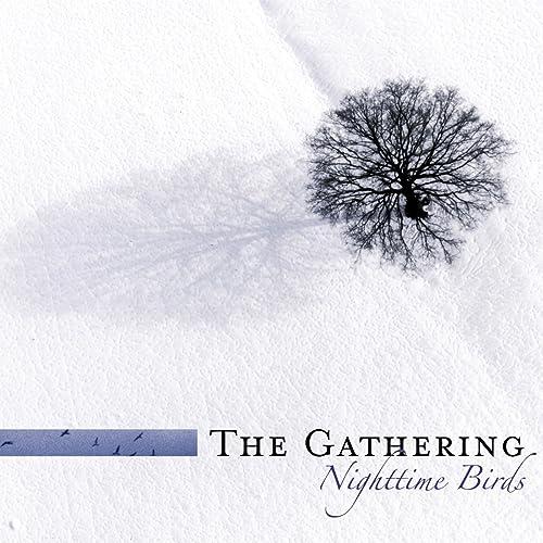 Nighttime Birds (Re-issue 2007 incl. Bonus tracks)
