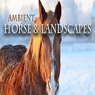 Horse & Landscapes