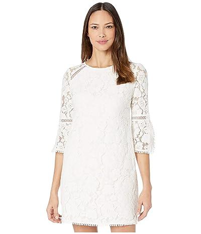 Vince Camuto Lace Shift Dress w/ Trim Detail (Ivory) Women