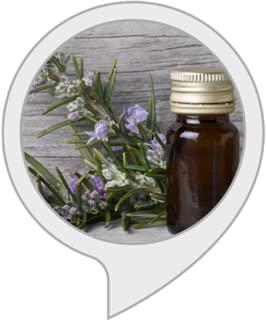 Aromatherapy Blend Focus