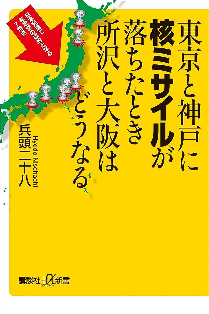 定期的に奇妙なファイナンス東京と神戸に核ミサイルが落ちたとき所沢と大阪はどうなる (講談社+α新書)