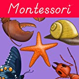 Montessori Zoology - Parts of Animals - Invertebrates