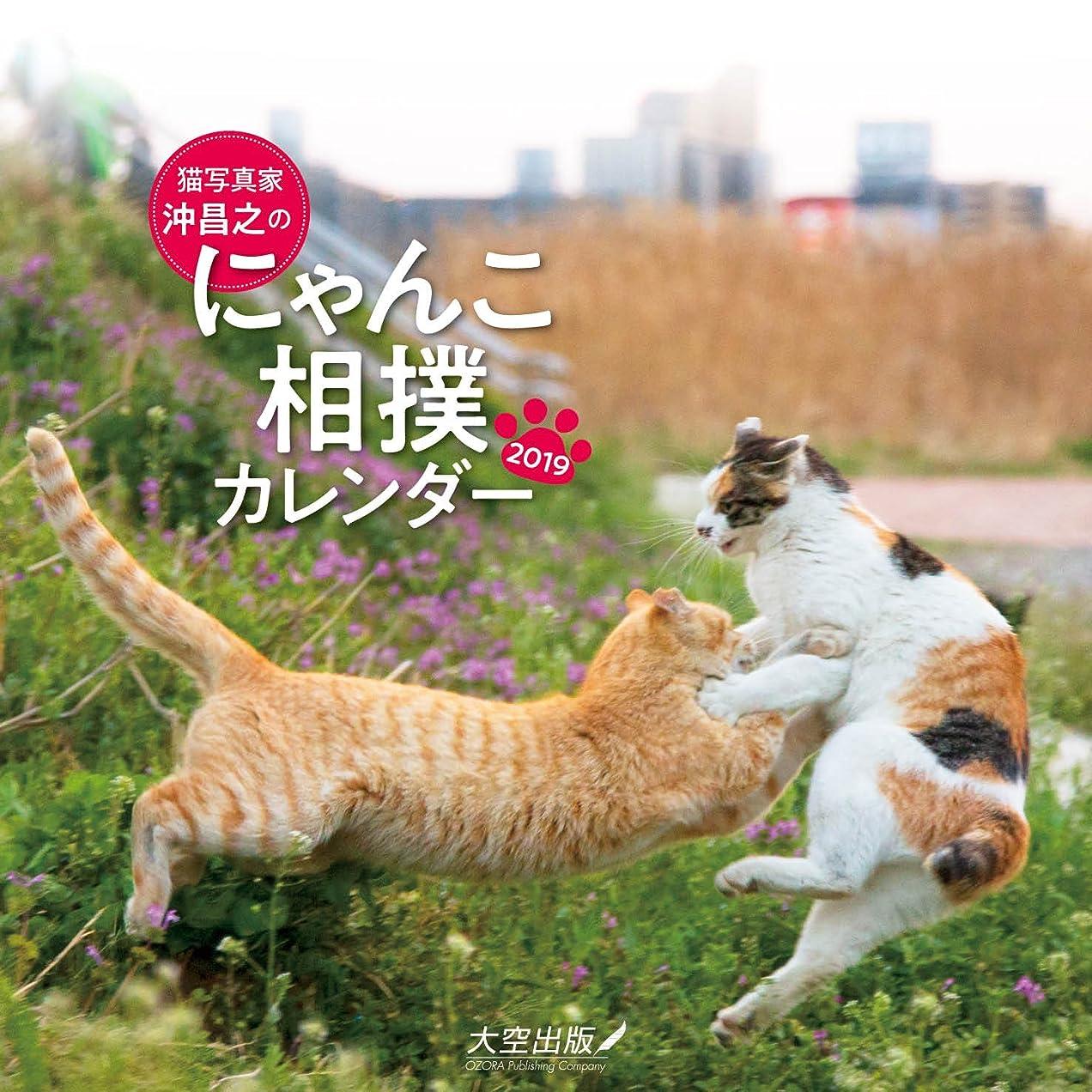 ダイヤモンド領域陰謀猫写真家 沖昌之のにゃんこ相撲カレンダー2019 ([カレンダー])