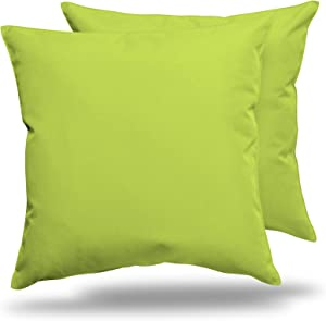 "ALEXANDRA'S SECRET HOME COLLECTION Outdoor Decorative Throw Pillow Pack of 2 Stuffed Throw Pillows UV Resistant Water Proof Complete Pillow with Polyester Fill Insert (Solid 18"" x 18"", Kiwi)"