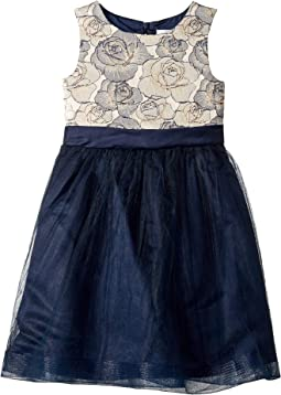 Embroidered Mesh Dress (Little Kids)