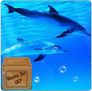 Underwater Swimming Dolphin Live Wallpaper
