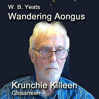 Wandering Aongus