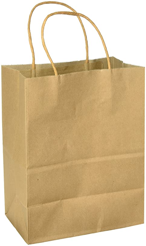 GIFT EXPRESSIONS 12-Count Premium Quality Natural Brown Kraft Bag, Birthday Party Gift Favor Bag Set, Biodegradable Paper (12CT, Solid Medium)