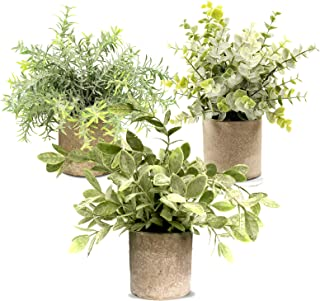 Hopewood Artificial Eucalyptus Mini Potted Faux Plant,Fake Plants in pots (3 Pack)