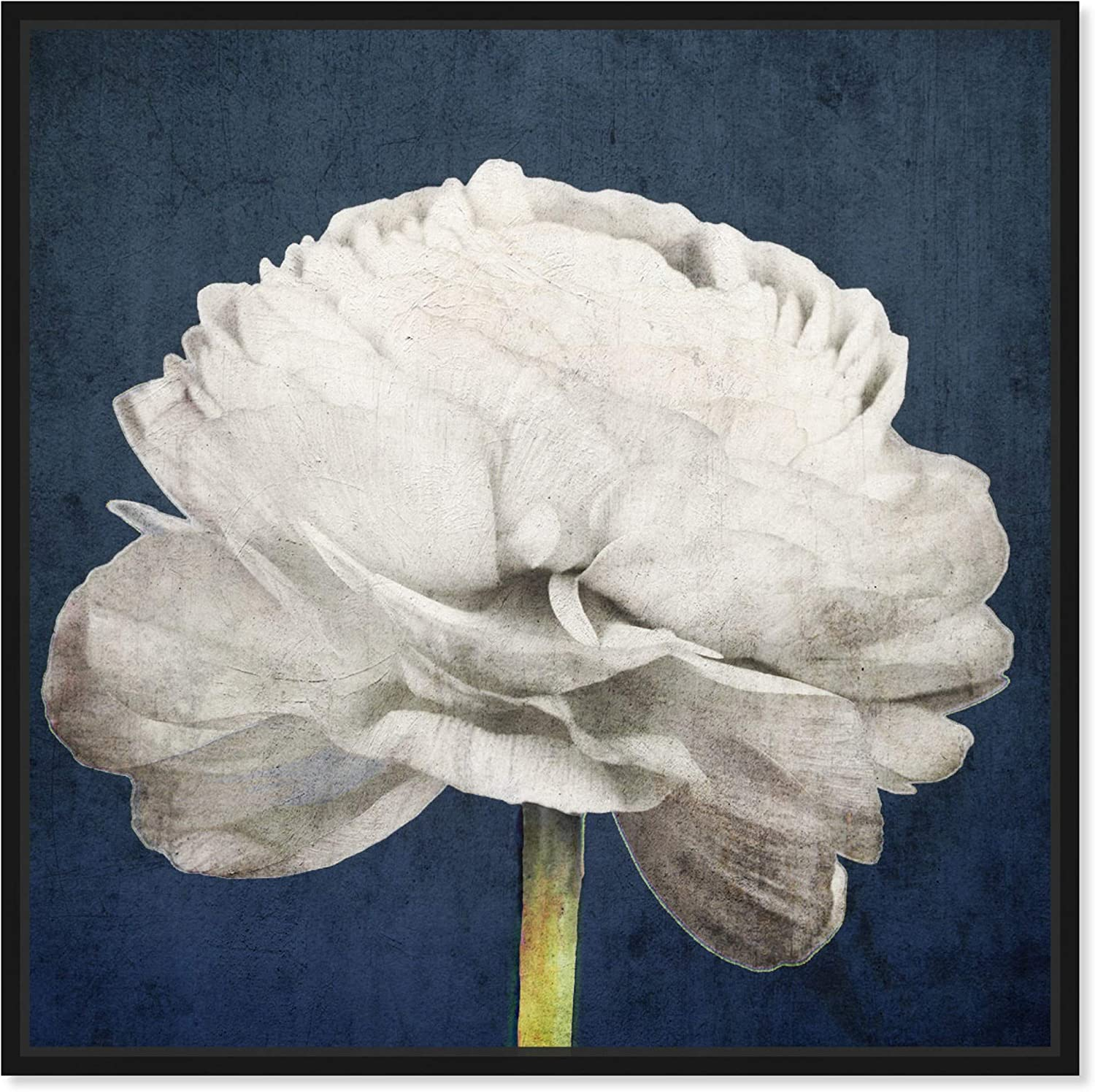 The Oliver Gal Artist Outlet SALE Co. Floral Botanical Fort Worth Mall Art C Wall Framed and
