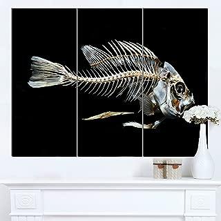 Designart MT13163-3P Fish Skeleton Bone on Black - Large Animal Metal Wall Art,Black,36x28