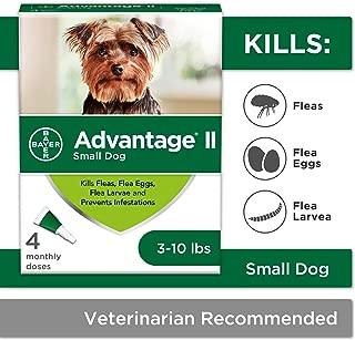 Best advantage small dog Reviews