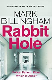 Rabbit Hole: The new masterpiece from the Sunday Times number one bestseller (English Edition)