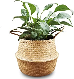 La Maia Natural Seagrass Belly Plant Basket with Handles, Woven Planter Basket for Storage, Laundry, Picnic, and Beach Bag (Natural Seagrass, M)