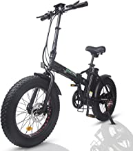 ECOTRIC Electric Foldable Bike Beach Snow Bicycle 20