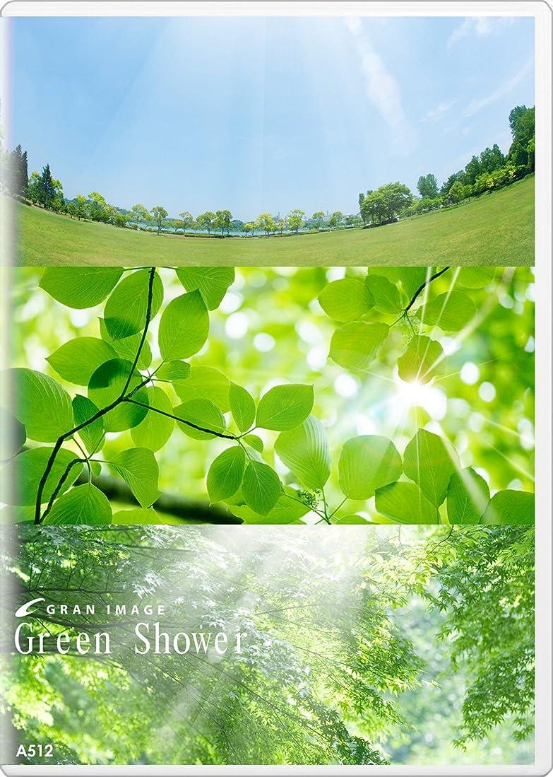 サドル専門化するステーキグランイメージ A512 グリーンシャワー(ロイヤリティフリー写真素材集)