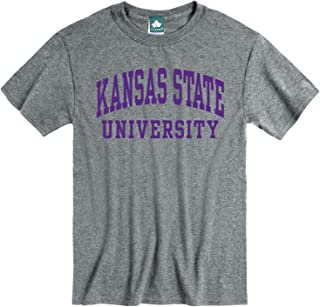 Ivysport Short Sleeve Adult Grey T-Shirt with Classic Arch Logo, NCAA Colleges and Universities
