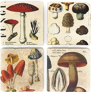 Studio Vertu Mushrooms Marble Coasters, Set of 4
