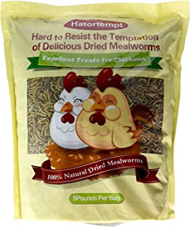 Hatortempt 5 lbs Non-GMO Dried Mealworms-High-Protein Mealworms for Wild Bird,Chicken, Ducks,Fish,Reptile, Tortoise, Amphibian,Lizard