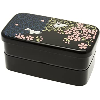 2 Tier 560ml with Carrying Bag JAPAN IMPORT Lunch Box Japanese Bento Bowl