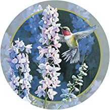 Thirstystone Stoneware Coaster Set, Hummer in Delphiniums