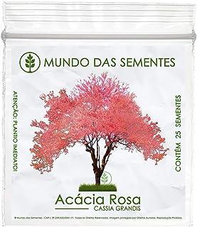 25 Sementes de Acácia Rosa – Cassia grandis - Mundo das Sementes