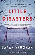 Little Disasters: A Novel