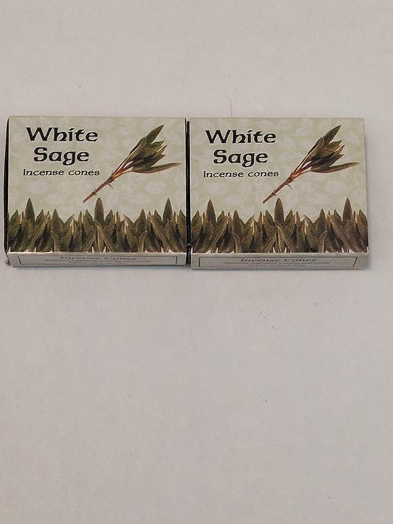模索費やすずっとKamini ホワイトセージ線香 マルチパック 2 Packs (20 Cones) ブラウン