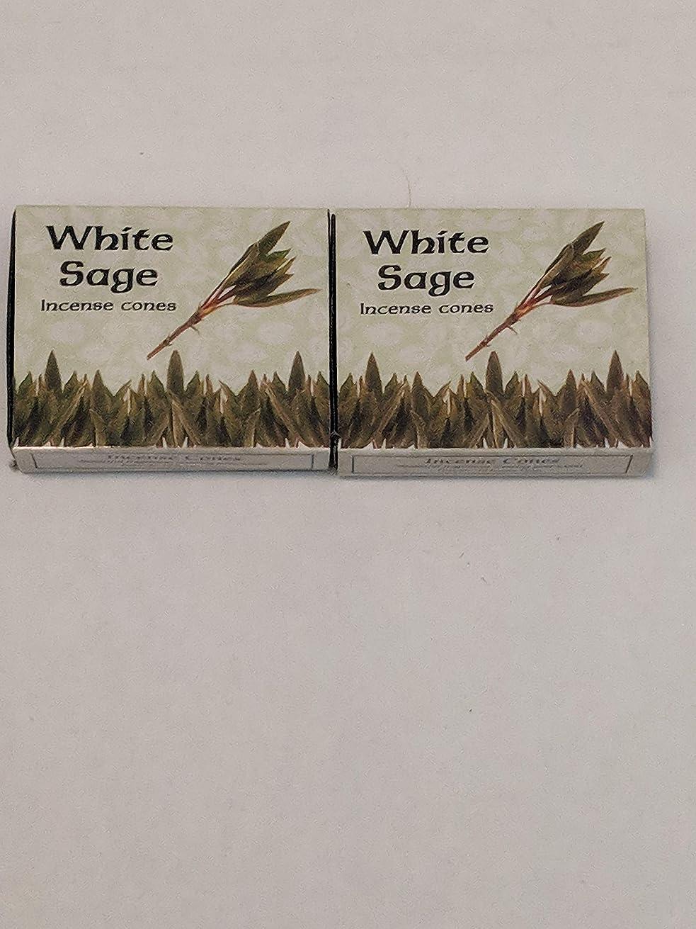 不合格カッター自分Kamini ホワイトセージ線香 マルチパック 2 Packs (20 Cones) ブラウン