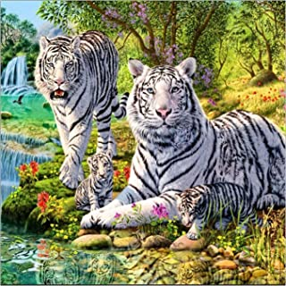 DIY 5D Diamond Painting by Number Kit, White Tiger Crystal Rhinestone Embroidery Cross Stitch Arts Craft Supply Canvas Wall Decor