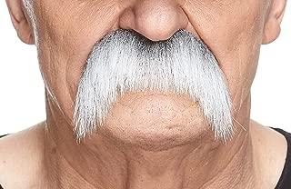 Best horseshoe mustache costume Reviews