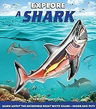 Explore a Shark