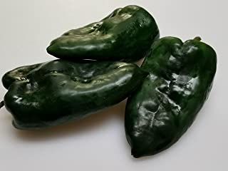 ancho gigantea pepper