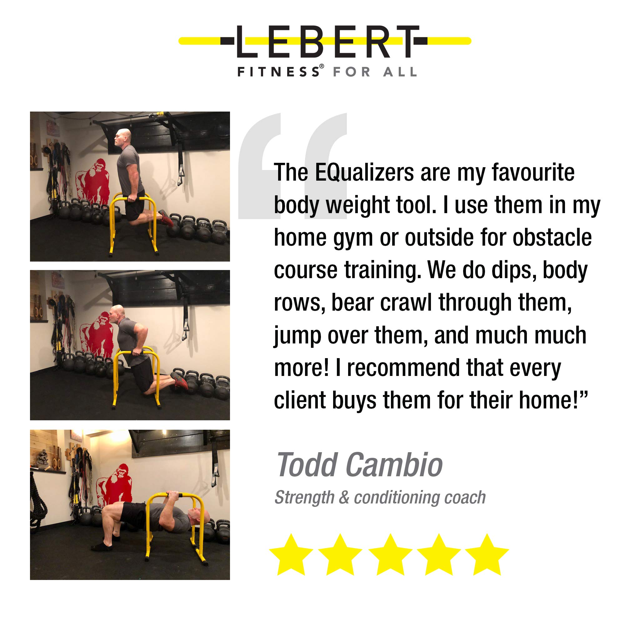 Lebert Fitness Dip Bar Stand - Original Equalizer Total Body Strengthener Pull Up Bar Home Gym Exercise Equipment Dipping Station - Hip Resistance Band, Workout Guide and Online Group