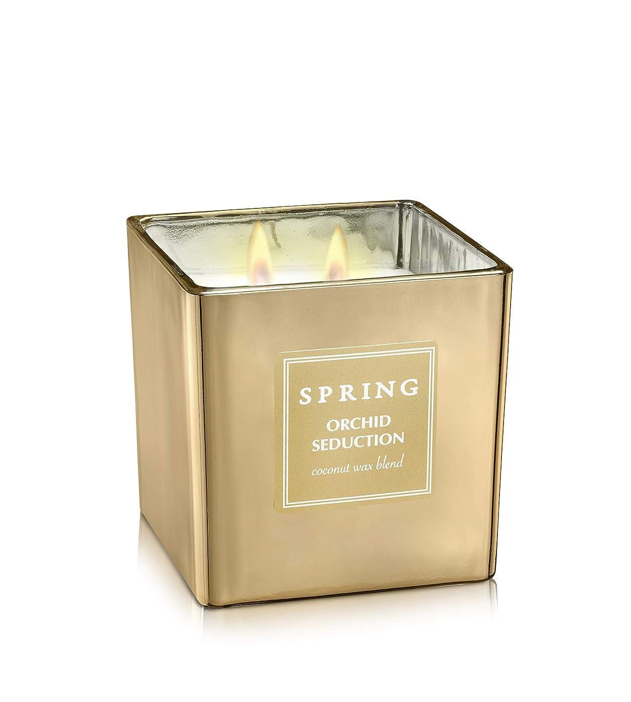 興奮スカリー再開ばね香りつきラグジュアリーCoconutワックスGolden Candle?–?Cubic?–?サイズ8?–?アルプスの花ホームデコレーション Cubic 8.5 oz